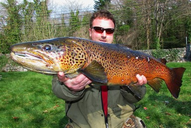 Picture 10 It is an amazing feeling landing a large fish especially when it a trout of 13lb 9oz remember stick to the rule always have that last cast